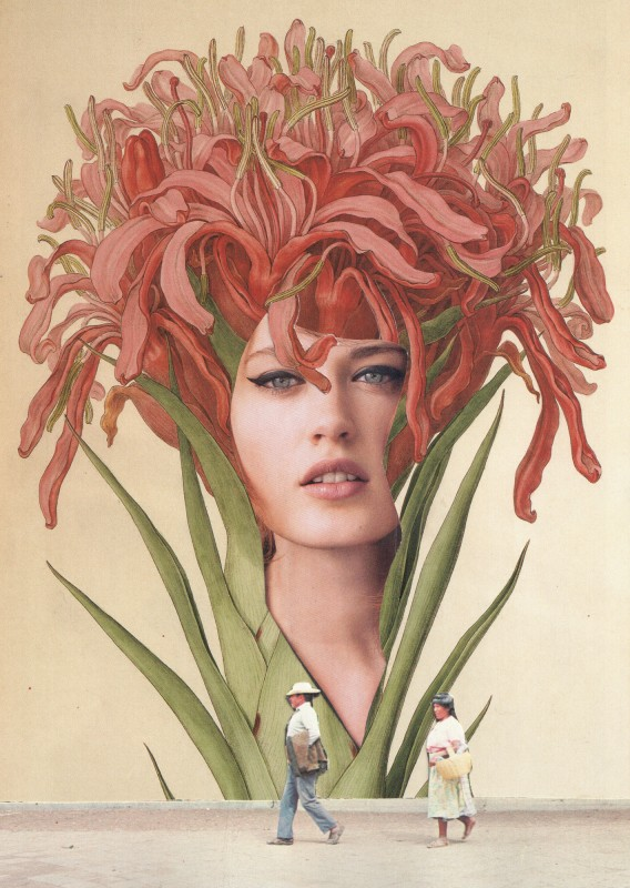 Human Plant