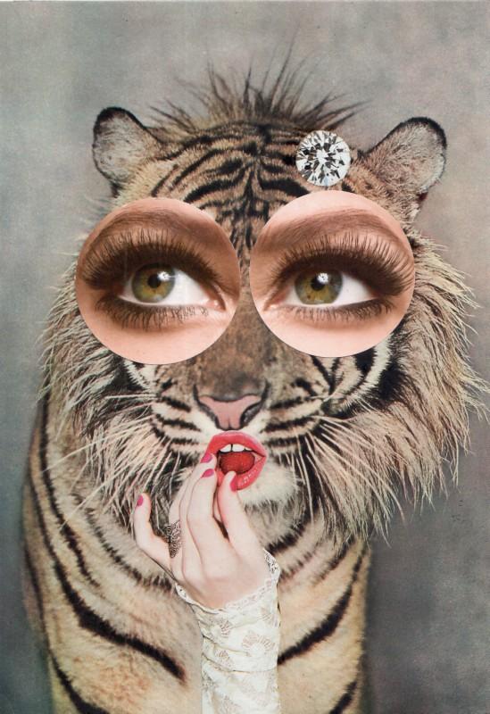 Miau - Meow