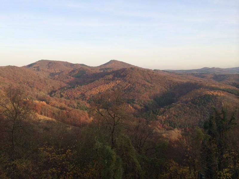 Herbstlandschaft zu Fuessen des Drachenfelses