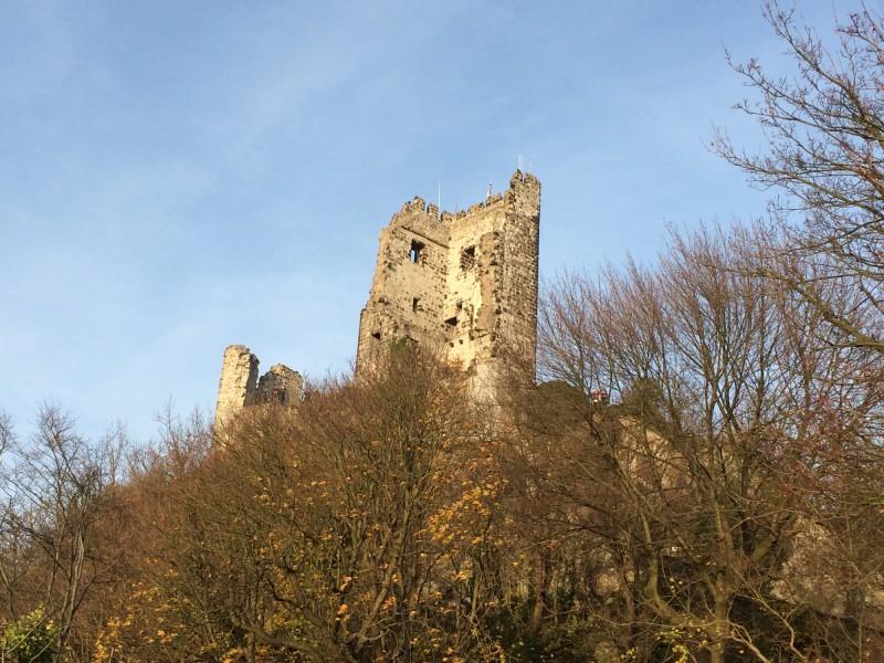 Ruine der Burg Drachenfels