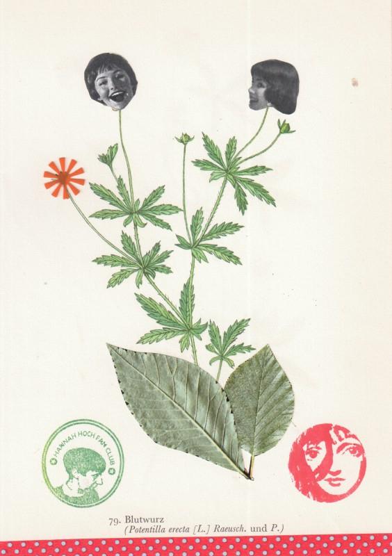 Von Blumen und Frauen 11