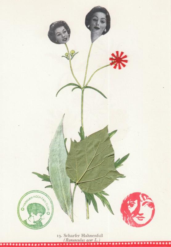 Von Blumen und Frauen 13
