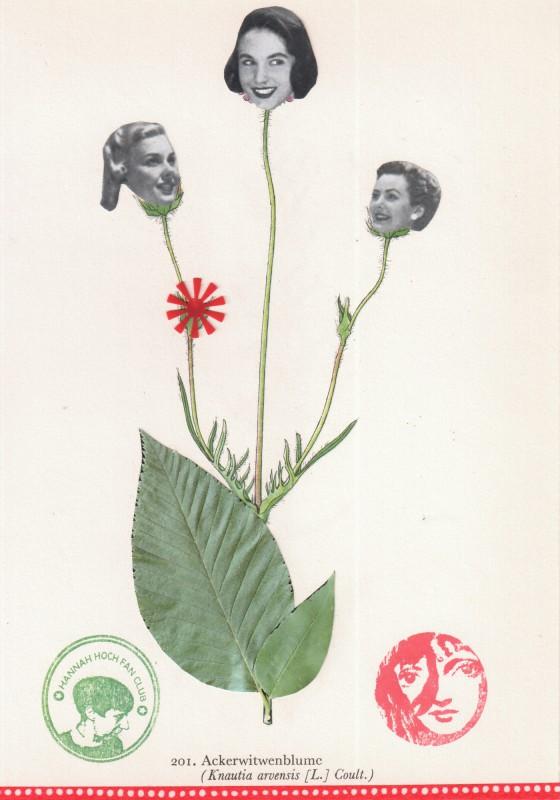Von Blumen und Frauen 16