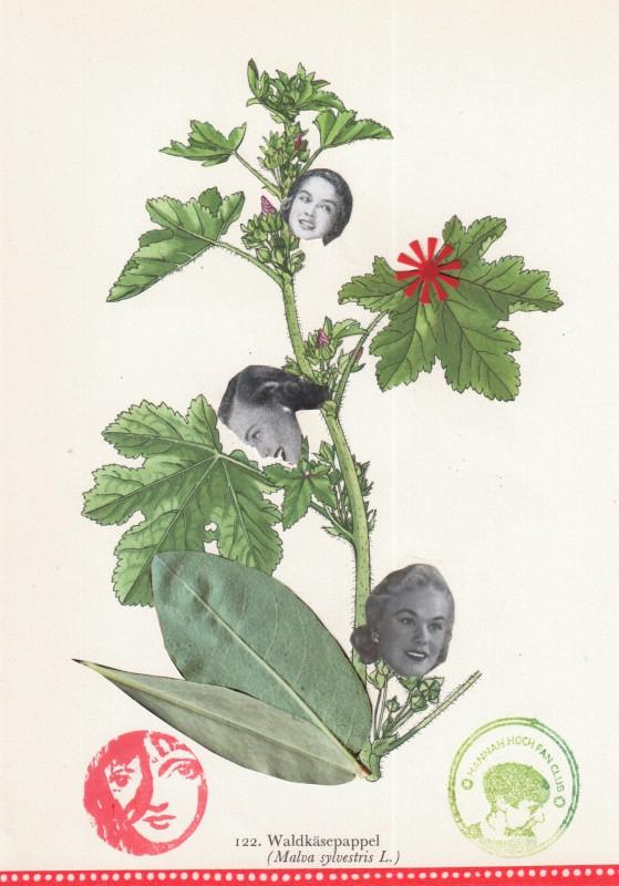 Von Blumen und Frauen 22