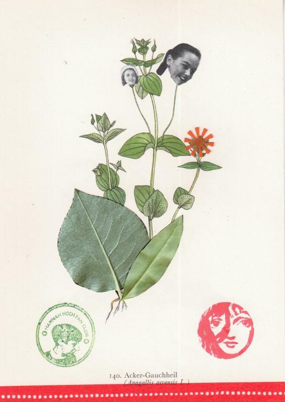 Von Blumen und Frauen 3