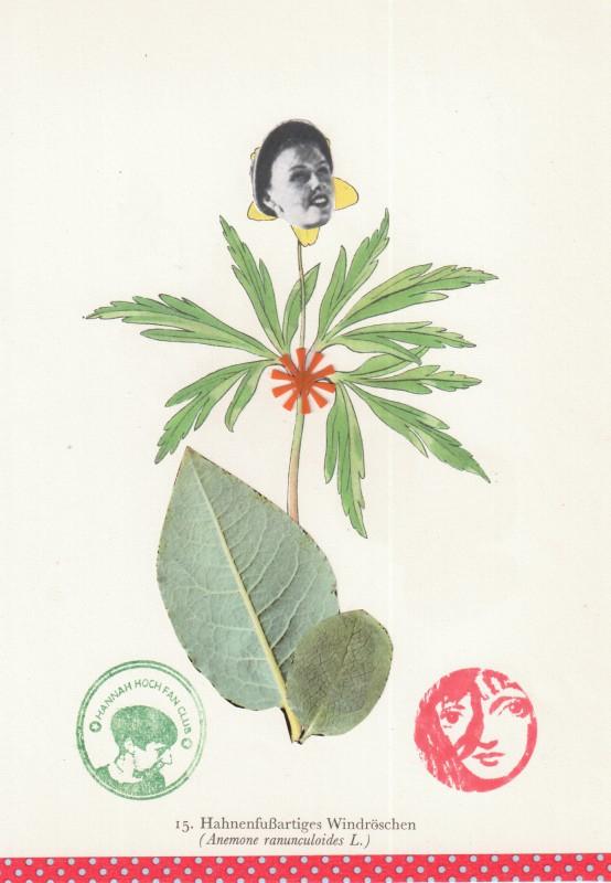 Von Blumen und Frauen 6