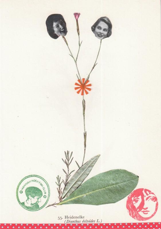 Von Blumen und Frauen 8