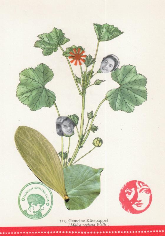 Von Blumen und Frauen 9