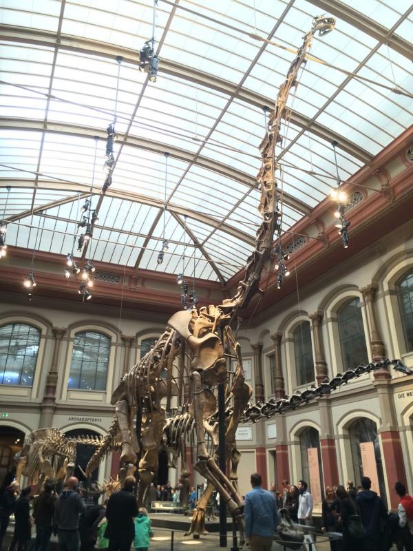 Naturkundemuseum Berlin - Saurierwelt