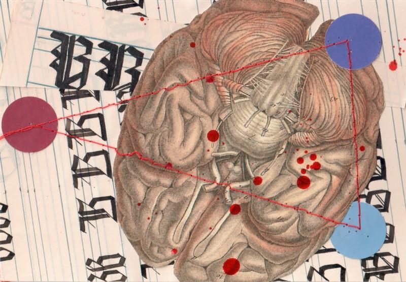 Anatomisches Alphabet B