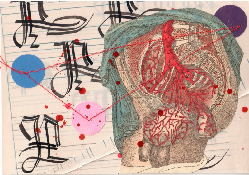 Anatomisches Alphabet P