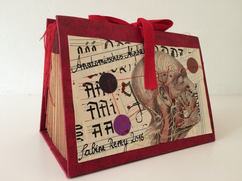 Anatomisches Alphabet