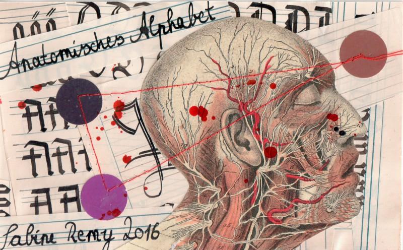 Titelblatt Anatomisches Alphabet - Cover