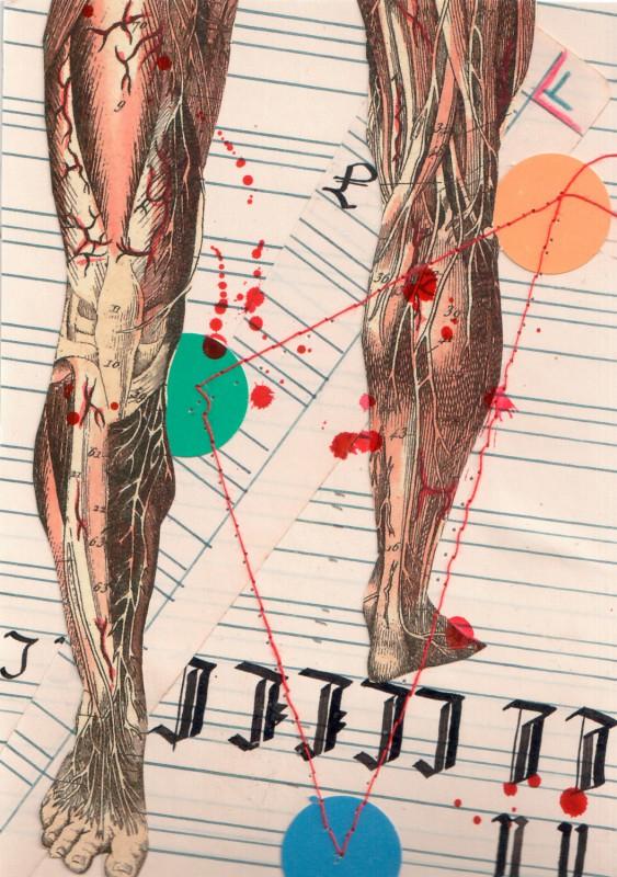 Anatomisches Alphabet L