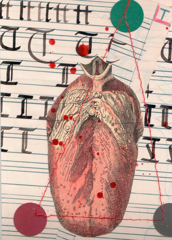 Anatomisches Alphabet T