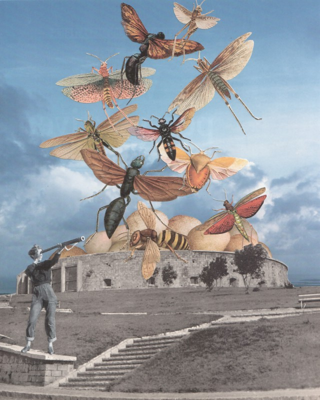 No11 Sabine Remy and Skordal - The Swarm - 2013