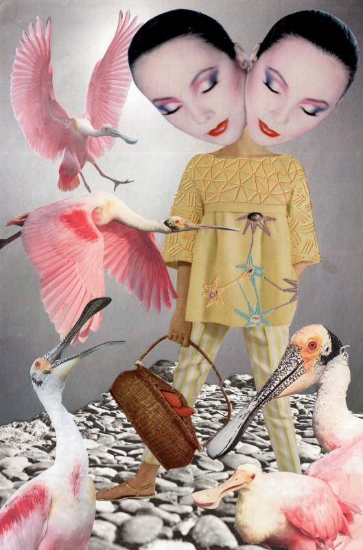 No33 Sabine Remy and Lynn Skordal - Feeding Spoonbills - 2015