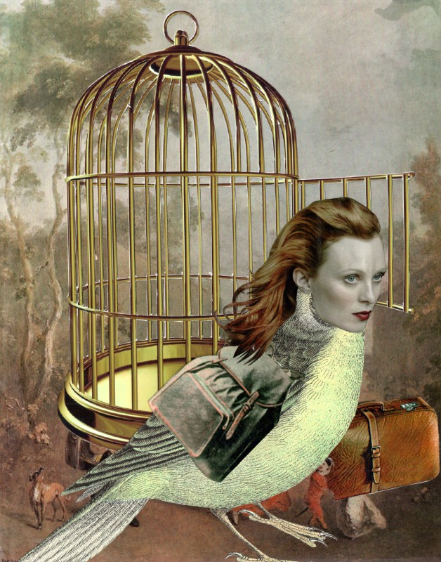 No62 Lynn Skordal and Sabine Remy - Leaving the golden cage - 2016