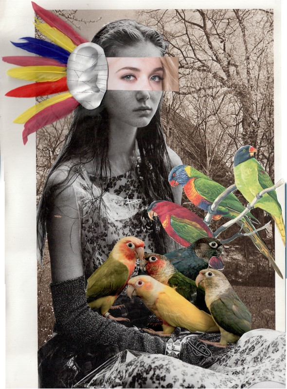 No94 Lynn Skordal and Sabine Remy - Listen to the soul of birds / Horch auf die Seele der Vögel - 2018