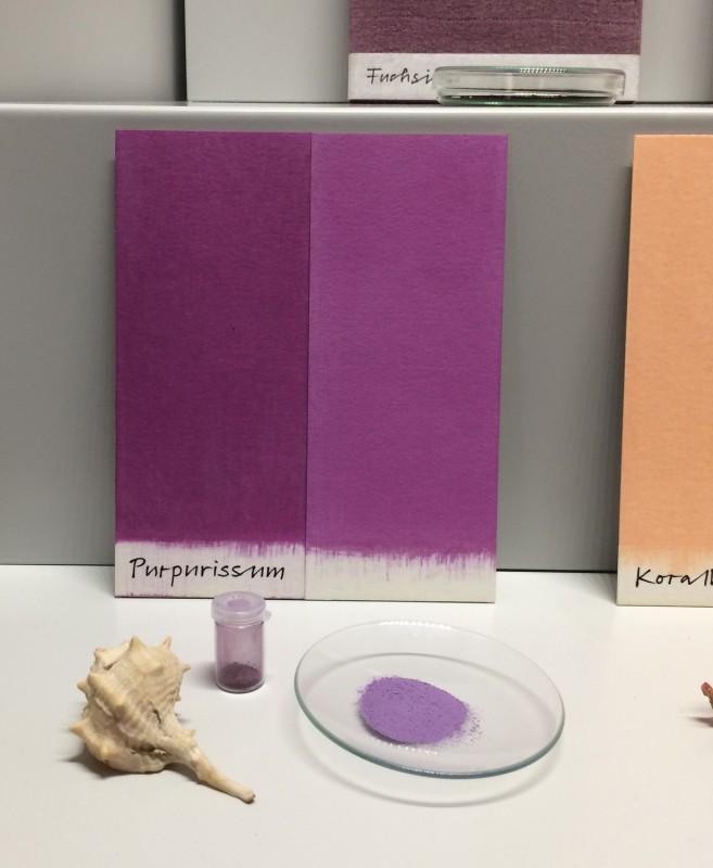 Museum Wiesbaden Dauerausstellung Natur - Farben
