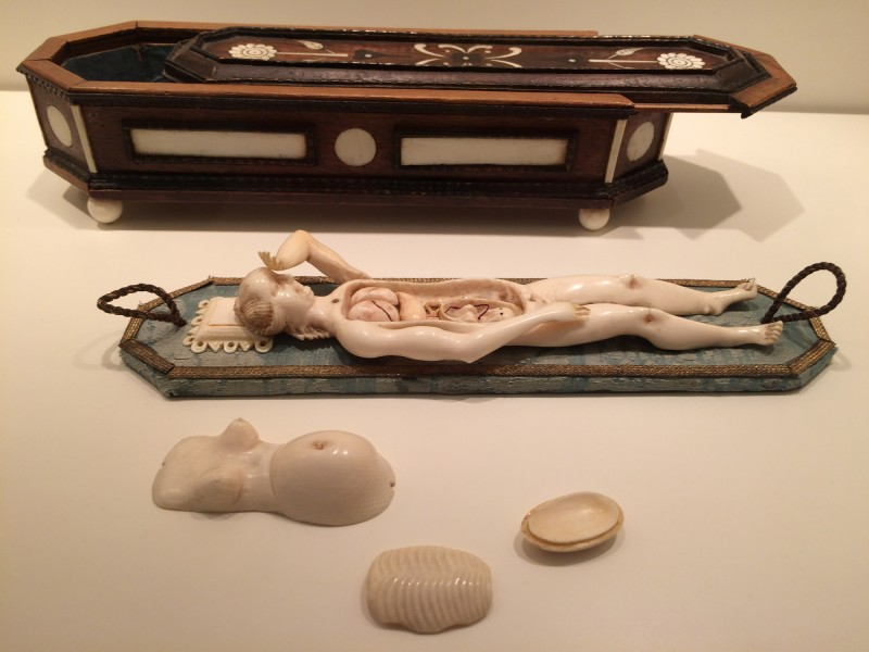 Anatomisches Lernmodell einer Schwangeren- ca 1680- Wunderkammer Olbricht<br>Anatomical teaching model of a pregnant woman- around 1680 - Wunderkammer Olbricht