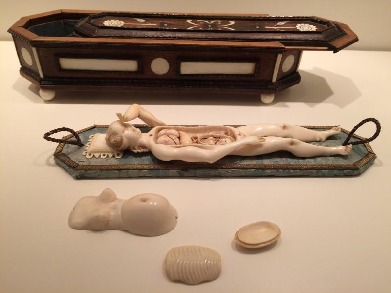 Anatomisches Lernmodell einer Schwangeren- ca 1680- Wunderkammer Olbricht<br>Anatomical teaching model of a pregnant woman- around 1680 - Wunderkammer Olbricht