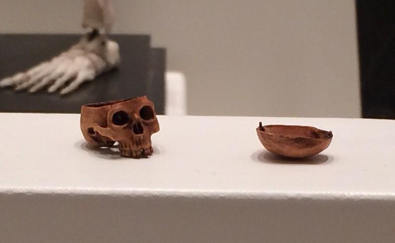 Miniatur-Totenkopf aus einem Kirschkern 19. Jhd. - Wunderkammer Olbricht<br>Miniature skull from a cherry stone 19th century - Wunderkammer Olbricht