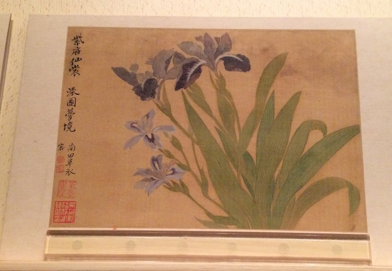 Flowers - by Yun Ahouping (1633-1690) - Album Leaves - Qing Dynasty (2)