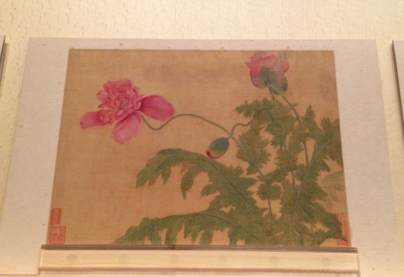Flowers - by Yun Ahouping (1633-1690) - Album Leaves - Qing Dynasty (3)