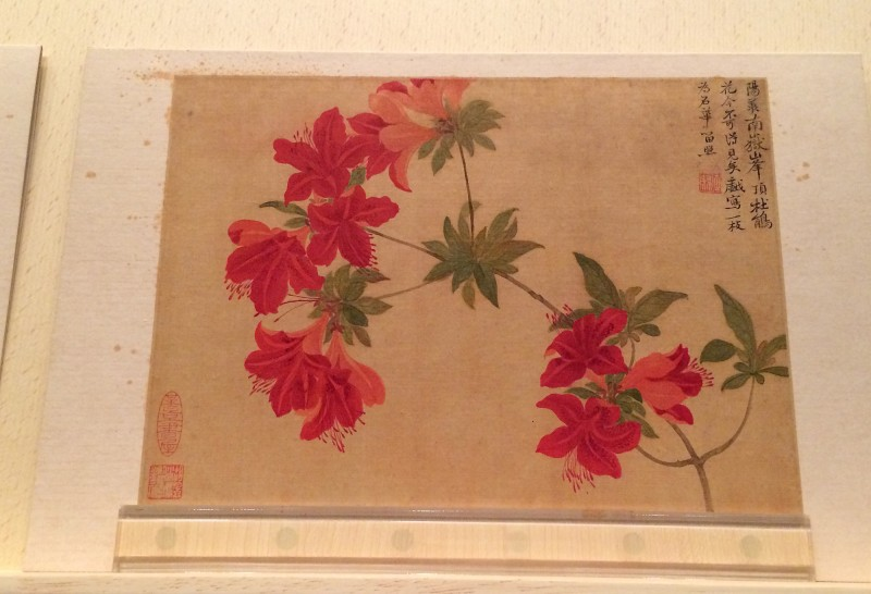 Flowers - by Yun Ahouping (1633-1690) - Album Leaves - Qing Dynasty (4)