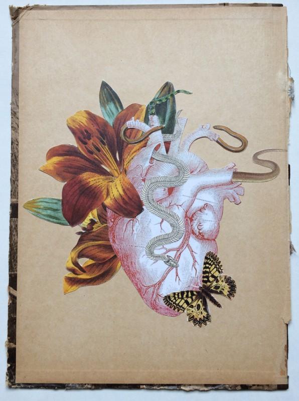 Nur ein Herz / Just a heart
