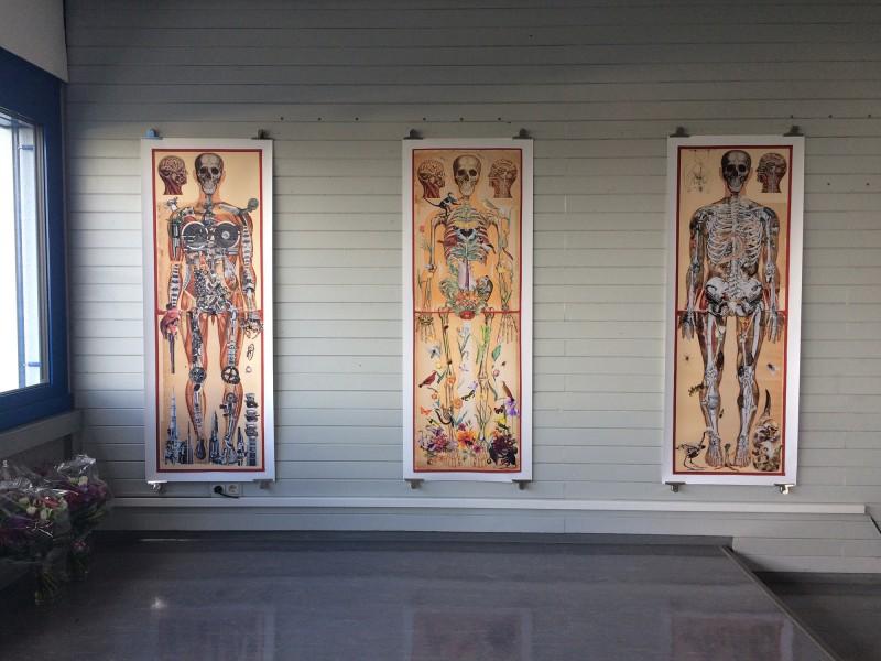 Anatomische Tafeln / Anatomical Panels (Prints) at Galerie 511 eiDADAUs Butzbach 2018