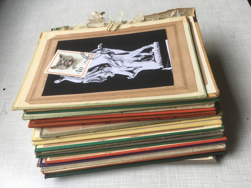 Postcards and Stamps  - all togehter