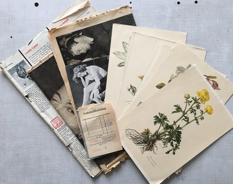Zeitschriften und Blumenbilder / magazines and flower pictures