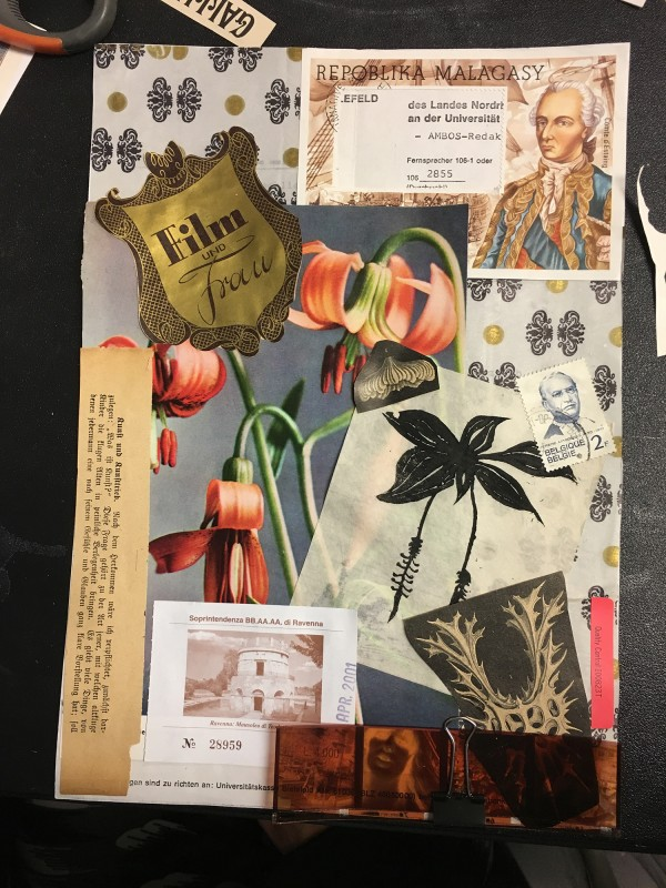Collage by Liz Juneau