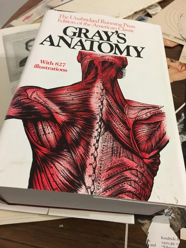 Anatomybuch in einem der unzähligen Secondhandläden gefunden / Anatomy book found in one of the countless second-hand shops
