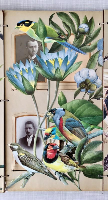 Viktoriansches Fotoalbum - 6