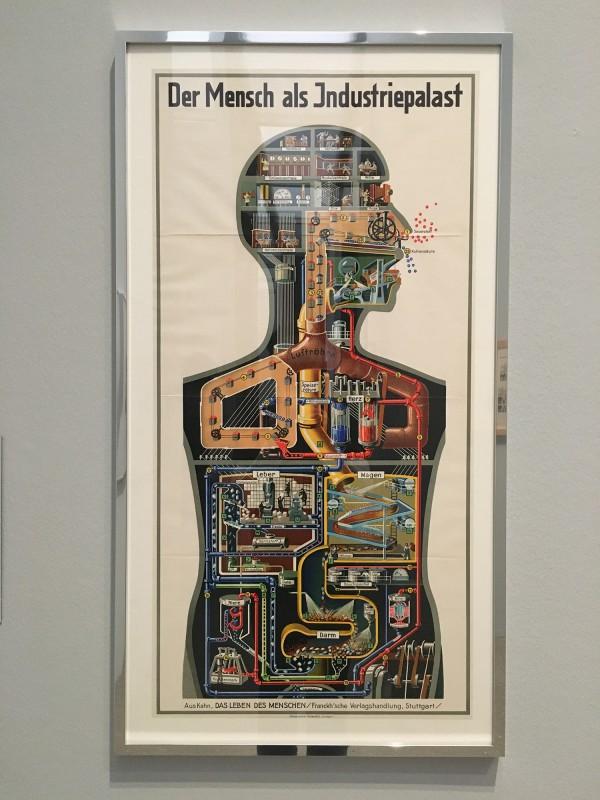 Museum Folkwang - Der montierte Mensch - Fritz Kahn - Der Mensch als Industriepalast - Man as industrial place - 1926