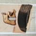 Postcard by Allan Bealy thumbnail