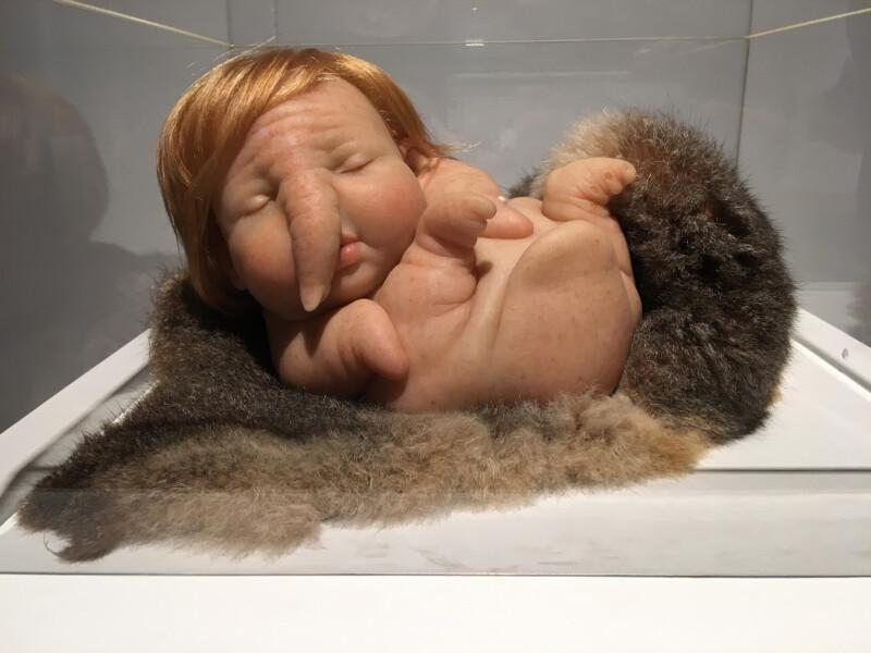 Patricia Piccinini - Newborn - 2010 -Osthaus Museum Hagen - Lebensecht