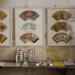 Tag der Kunst - Pirna - Faecher-Ausstellung - Fotos von Frank Voigt und Petra Lorenz 3 thumbnail