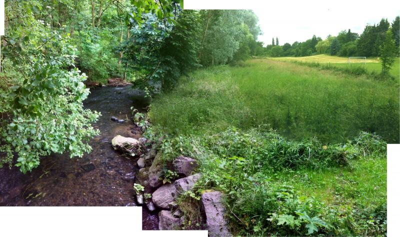 Düssel und Umgebung - Ein Panorama