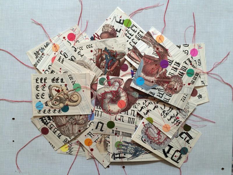 Alle Karten Anatomisches Alphabet - All cards