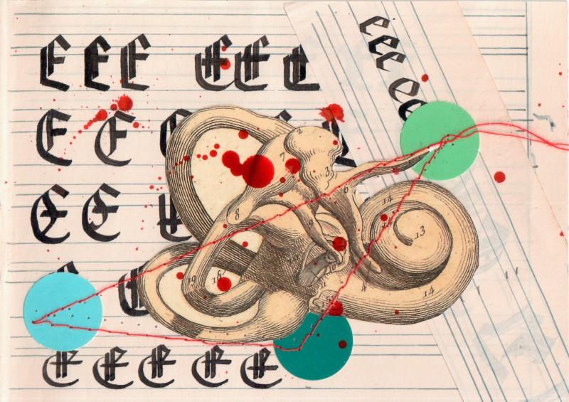 Anatomisches Alphabet E
