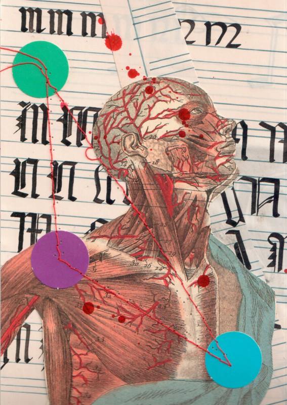 Anatomisches Alphabet MN