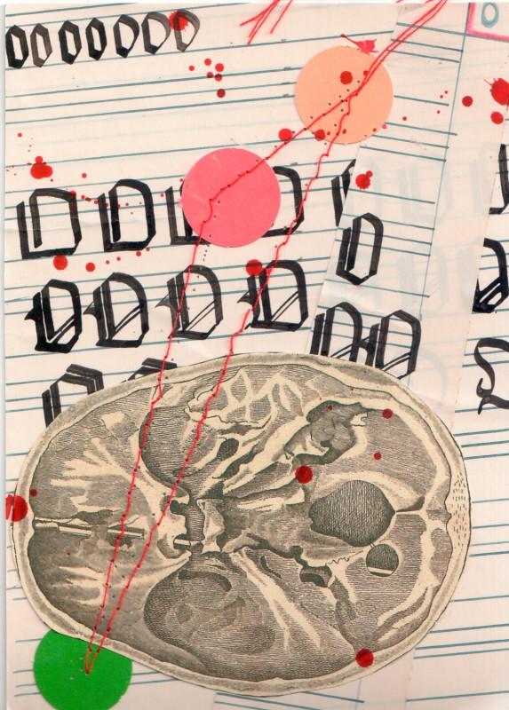 Anatomisches Alphabet O