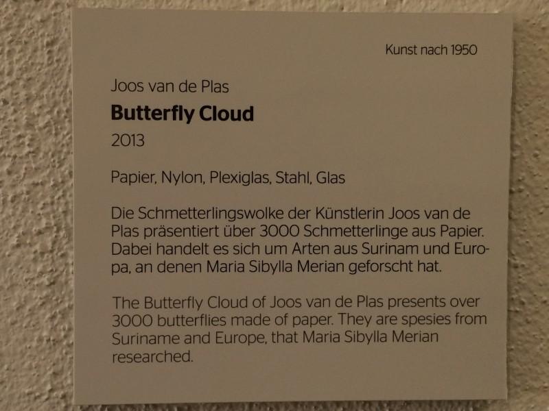 Butterfy Cloud by Joos van de Plas 2013 Infotafel