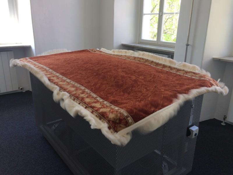 Fliegender Teppich  von/ Flying Carpet by Wilhelm Koch at Luftmuseum/ Air Museum