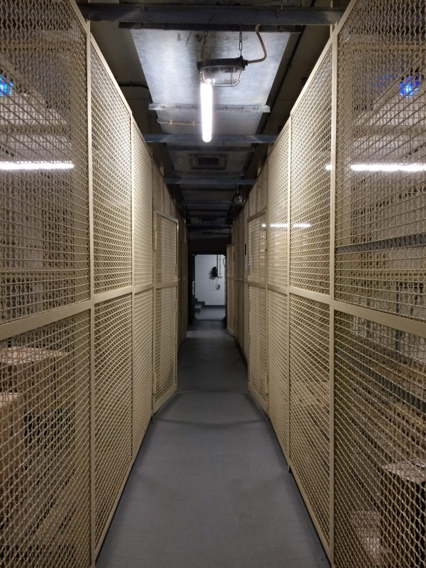 Im Tresorraum<br>Inside the vault