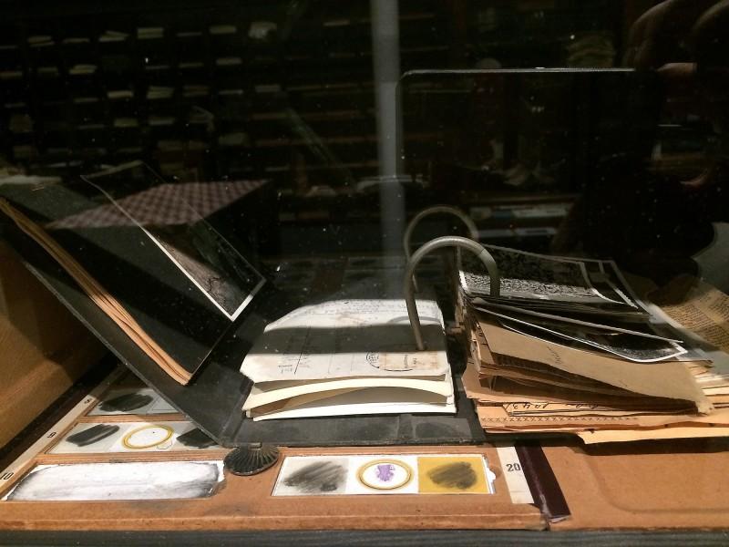 Sigrid Sigurdsson - Die Architektur der Erinnerung, 1988 - 2009 -  Das Museum im Museum - Vitrinen Detail von